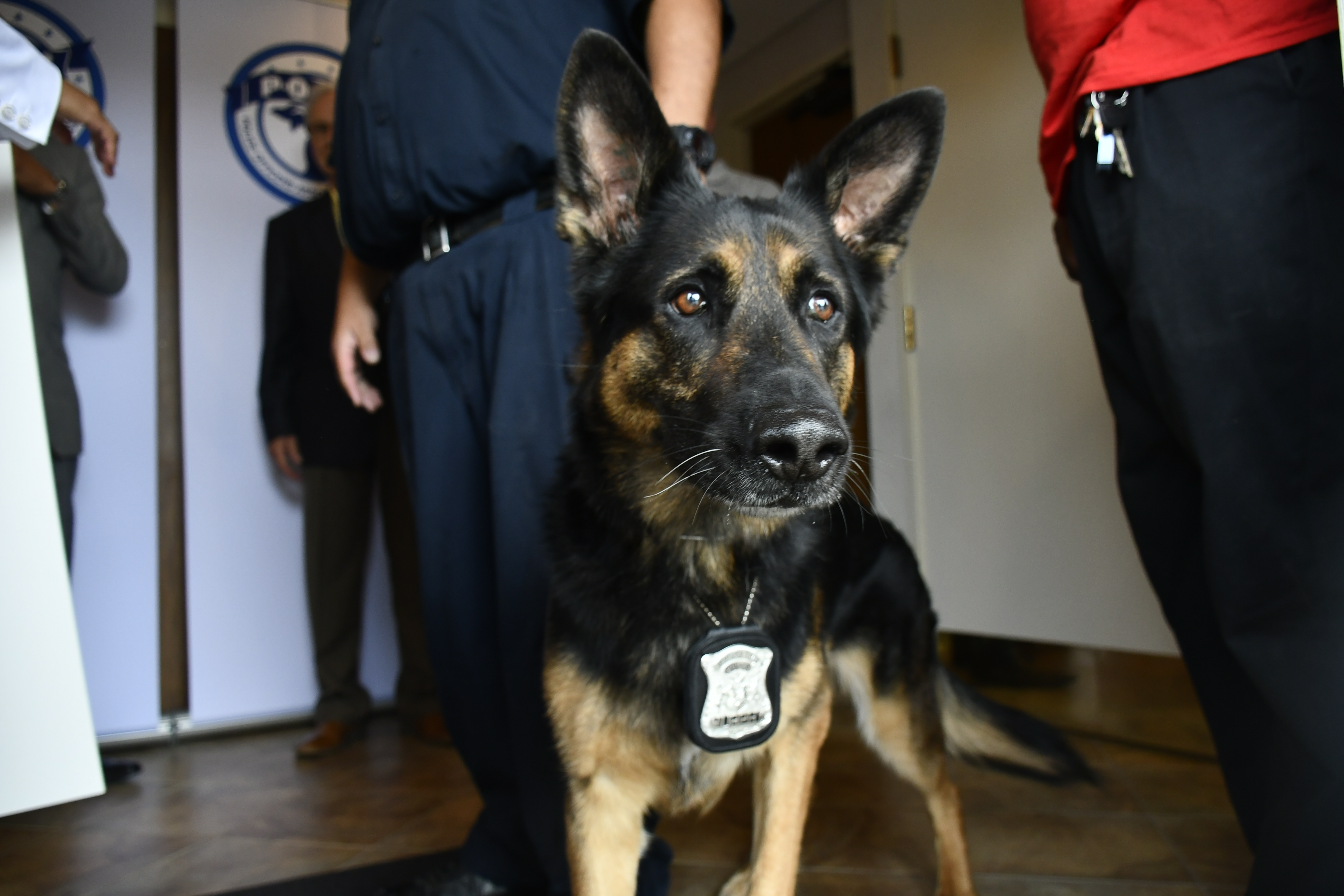 Law Enforcement Grant for K9 Units from AT&T Michigan, POAM