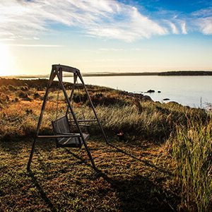 Swing on the grass near a lake | RPA's Financial Assumptions article